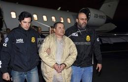 Hôm nay (5/11), xét xử trùm ma túy khét tiếng nhất thế giới El Chapo