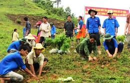 Thanh Hóa cấp hơn 604 tấn gạo hỗ trợ đồng bào dân tộc huyện Mường Lát
