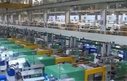 Doanh nghiệp Việt lạc quan về triển vọng thương mại toàn cầu