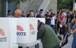 Hôm nay (6/11), cử tri Mỹ bầu cử giữa nhiệm kỳ