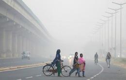 Ô nhiễm không khí ở Ấn Độ cao gấp 35 lần mức cho phép