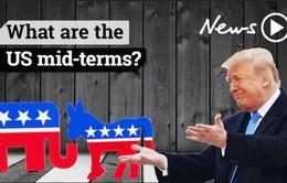 Nhân tố Donald Trump trong cuộc bầu cử giữa nhiệm kỳ tại Mỹ