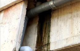 Bộ GTVT: Phải xử lý xong hư hỏng cao tốc Đà Nẵng - Quảng Ngãi trong tháng 11