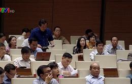 Đại biểu Quốc hội đề nghị cân nhắc thêm một số điều kiện đặc xá