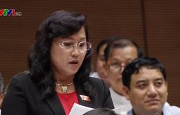 Đại biểu Quốc hội băn khoăn về quy định xử lý tiếng ồn trong chăn nuôi