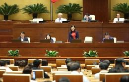 Đại biểu Quốc hội đề nghị không đặc xá tội phạm ma túy