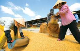 Hà Nội đạt nhiều thành tựu sau 10 năm xây dựng Nông thôn mới