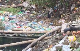 """Hồ Linh Quang: Hơn 10 năm chờ từ hồ """"chết"""" thành """"phổi xanh"""""""