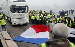 Pháp bắt giữ hơn 1.700 đối tượng biểu tình