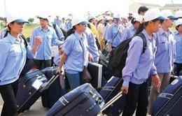 Nhật mở cửa 14 nghề, lao động Việt Nam có thể ở lại dài hạn