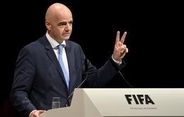 FIFA có thể cho ra đời 2 giải đấu mới