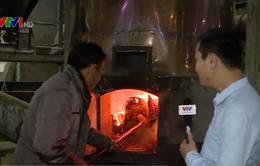 Cận cảnh quy trình sản xuất những hạt cà phê đủ tiêu chuẩn