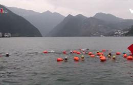 Bơi vượt sông Dương Tử