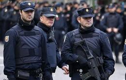 Tây Ban Nha triệt phá đường dây đưa hàng trăm người Việt nhập cảnh bất hợp pháp