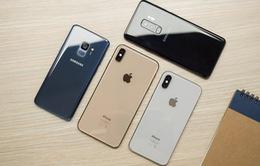 Thị trường smartphone sẽ sớm hồi phục, màn hình lớn sẽ vẫn chiếm vị trí chủ đạo