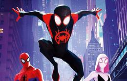 Sai lầm nếu nghĩ Siêu anh hùng Live Action mới hay, phim hoạt hình Người Nhện vẫn đỉnh không kém