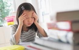 Trung Quốc: Áp lực từ cha mẹ còn nặng hơn áp lực thi cử