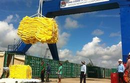 Giảm chi phí logistics để tăng sức cạnh tranh cho nông sản