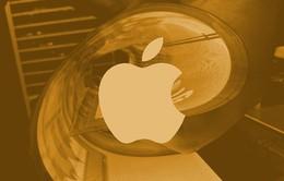 Màn hình OLED dẻo của Samsung sẽ được sử dụng trên iPhone 11?