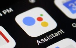 Từ năm 2019, Google Assistant sẽ tự đóng góp từ thiện chỉ với một câu lệnh từ người dùng