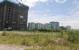 Phát hiện 178 công trình, dự án có vi phạm tại Quảng Nam