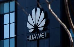 """Huawei """"bội thu"""" hợp đồng 5G"""