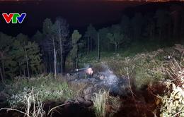 Đà Nẵng: Hai xe bồn tông nhau trên đèo Hải Vân dẫn đến cháy rừng