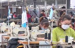 Doanh nghiệp dệt may đẩy mạnh thiết kế, chiếm lĩnh thị trường nội địa