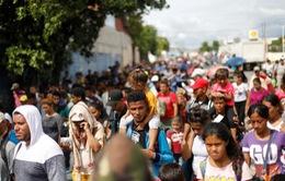 Liên Hợp Quốc chính thức thông qua Hiệp ước Toàn cầu về di cư