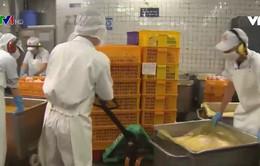 Kiểm tra an toàn thực phẩm đóng gói tại TP.HCM