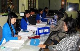 Nghệ An: 14 doanh nghiệp bị chuyển hồ sơ sang công an vì nợ tiền bảo hiểm