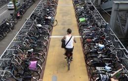 Hà Lan chi tiền cho người dân đi xe đạp