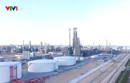 Ngày 23/12, Liên hợp Lọc hóa dầu Nghi Sơn chính thức vận hành thương mại