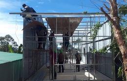 Lâm Đồng: Buộc tháo dỡ 20 căn nhà xây dựng trái phép trên đất rừng