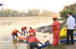 Cơ bản hoàn thành xử lý sự cố tràn dầu ở Thanh Hóa