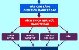Việt Nam ứng dụng thành công sinh học phân tử trong điều trị hen suyễn, COPD