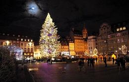 Hối hả mùa Noel tại Pháp