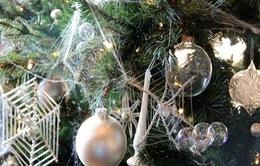 10 phong tục Giáng sinh kỳ quái trên khắp thế giới không phải ai cũng biết