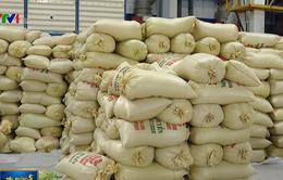 DN băn khoăn khi áp dụng thương hiệu gạo Việt Nam
