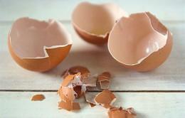Ăn vỏ trứng: Tác dụng và tác hại cần lưu ý
