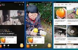 Livestream - Phương thức bán hàng mới của nông dân Trung Quốc