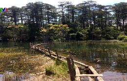 Tháo dỡ công trình vi phạm tại hồ Tuyền Lâm