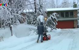 Bão tuyết hoành hành tại Mỹ, ít nhất 3 người thiệt mạng