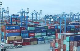 Giá dịch vụ cảng biển sẽ tăng 10%