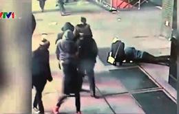 Cảnh sát Mỹ tìm nhẫn cầu hôn cho du khách