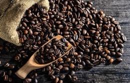 Tìm hướng tăng giá trị cà phê