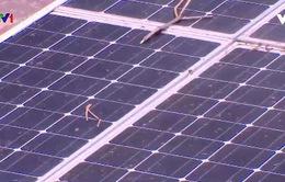 Phát triển năng lượng tái tạo ở Việt Nam
