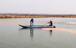 Tái diễn tình trạng nuôi cá tra giống tự phát