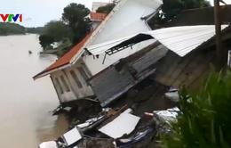 22 người thiệt mạng tại Philippines do mưa lớn