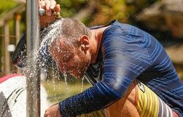 Nắng nóng kéo dài tại Australia